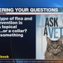 Ask a Vet: How to prevent fleas and ticks with warmer weather coming