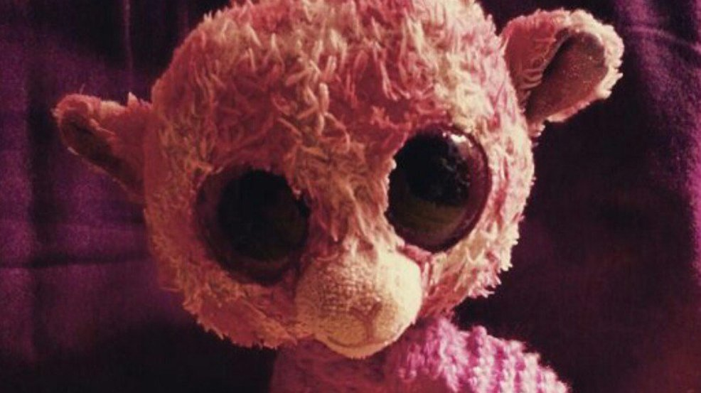 Woman posts photo of daughter's missing plush toy, prompts online support