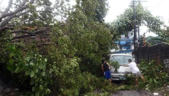 Residents clear a road November 8 after a tree was toppled by strong winds in the Philippine island province of Cebu.
