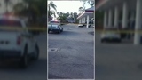 Dog shot, owner arrested at gas station in Royal Palm Beach