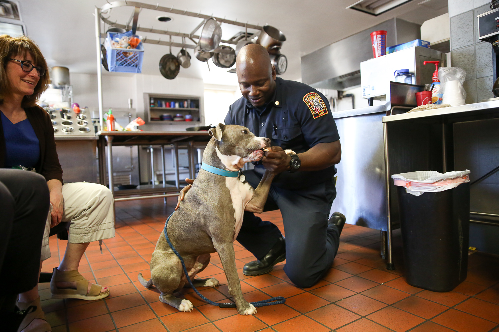 Engine Company 24 in Petworth was visited by Earl Grey, a two-year old pitbull who was adopted a year ago after being rescued from the streets of Florida with a broken pelvis. Although Earl Grey is a little shy, his mellow temperament won everyone over - he sat for selfies and enjoyed chicken snacks from firefighters and EMS workers. (Amanda Andrade-Rhoades/DC Refined)