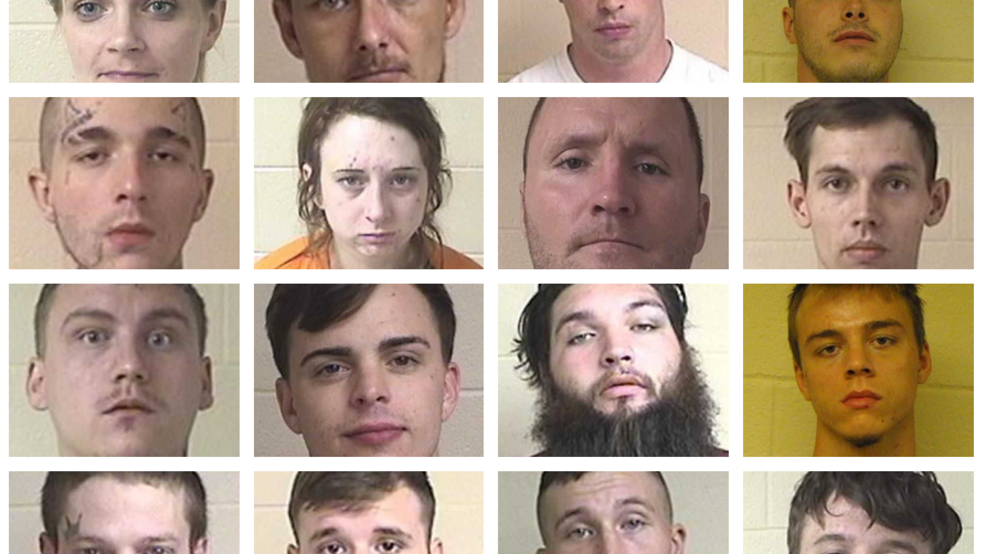 North Georgia authorities arrest 16 people in connection to