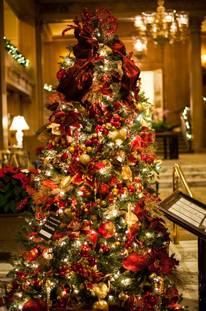<p>Sparkle, Spangle & Shine - 7.5 feet tall, wrapped in gold and red garlands, gold magnolia leaves and glitter branches. Located in the Fairmont Olympic Hotel in downtown Seattle, the annual Festival of Trees has officially kicked off this holiday season. Patrons can view the trees on display through December 2, 2018 - or bid on them for their home/office. Proceeds benefit Seattle Children's Hospital. (Image: Elizabeth Crook / Seattle Refined)</p>