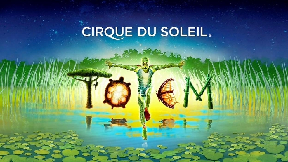 case analysis for cirque du soleil case essay Cirque du soleil case solution,cirque du soleil case analysis, cirque du soleil case study solution, cirque du soleil summary of backgrounds and facts cirque du soleil is a circus, which was founded by groups of road performers in 1984.
