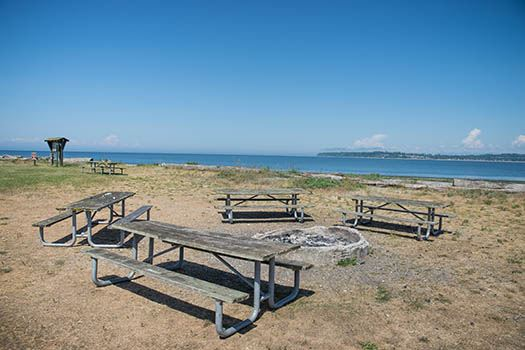 Near the U.S. – Canada border, Birch Bay State Park is a large coastal park full of clams and other shellfish ready to be harvested (with proper licensing). (Image: Washington State Parks)
