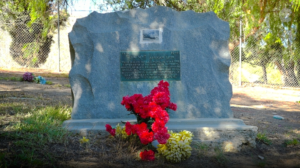 This is where Hollywood's most famous pets are buried