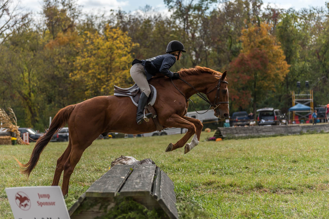 "The Camargo Hunter Trials celebrated its 77th year on Saturday, October 7 with its annual horse riding and tailgating competition at Clippinger Field in Indian Hill. The riding competition, which includes jumping logs, stone walls, and post fences, is a way to test the stamina of the horses and riders on terrain that might be found on a typical ""hunt field."" / Image: Mike Menke // Published: 10.8.17"