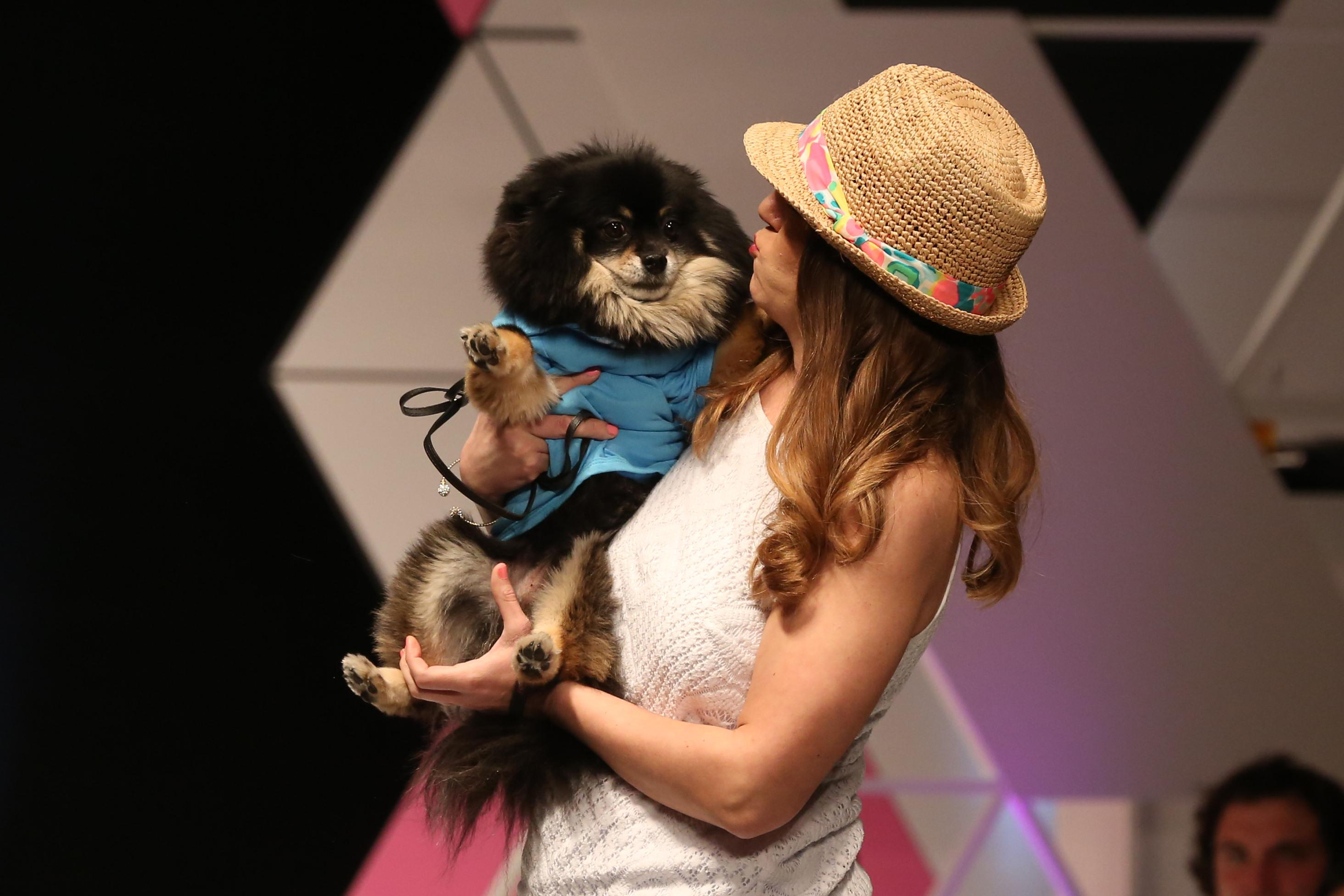 Fashion for Paws raised nearly $400,000 this year for the Humane Rescue Alliance, but the runway looks couldn't compete with the four-legged models. The April 8 event featured local philanthropists and dogs uniting for a great cause. (Amanda Andrade-Rhoades/DC Refined)