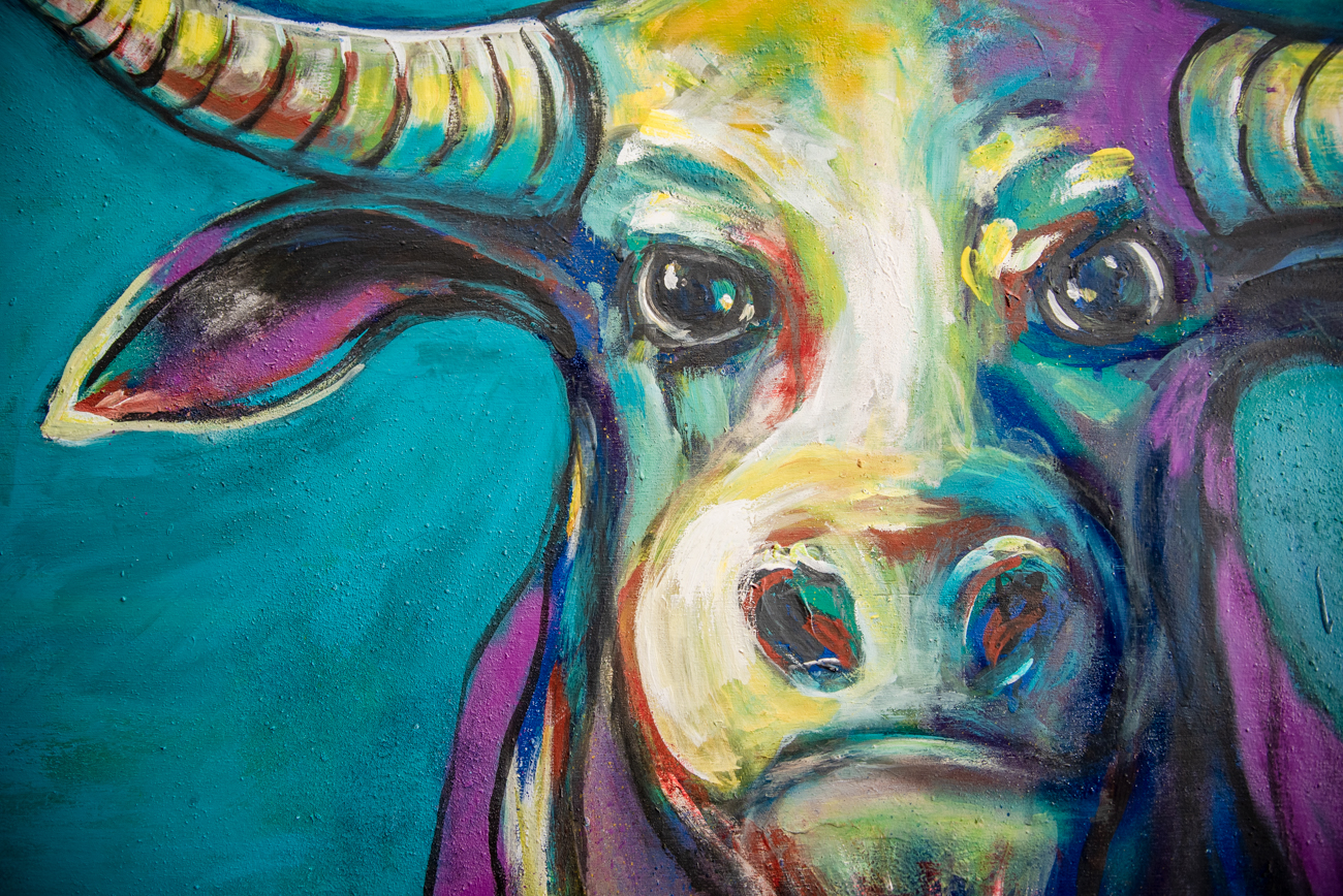 A vibrant portrait of a steer  by Linnoir Rich with Art by Linnoir / Image: Melissa Sliney // Published: 6.26.19