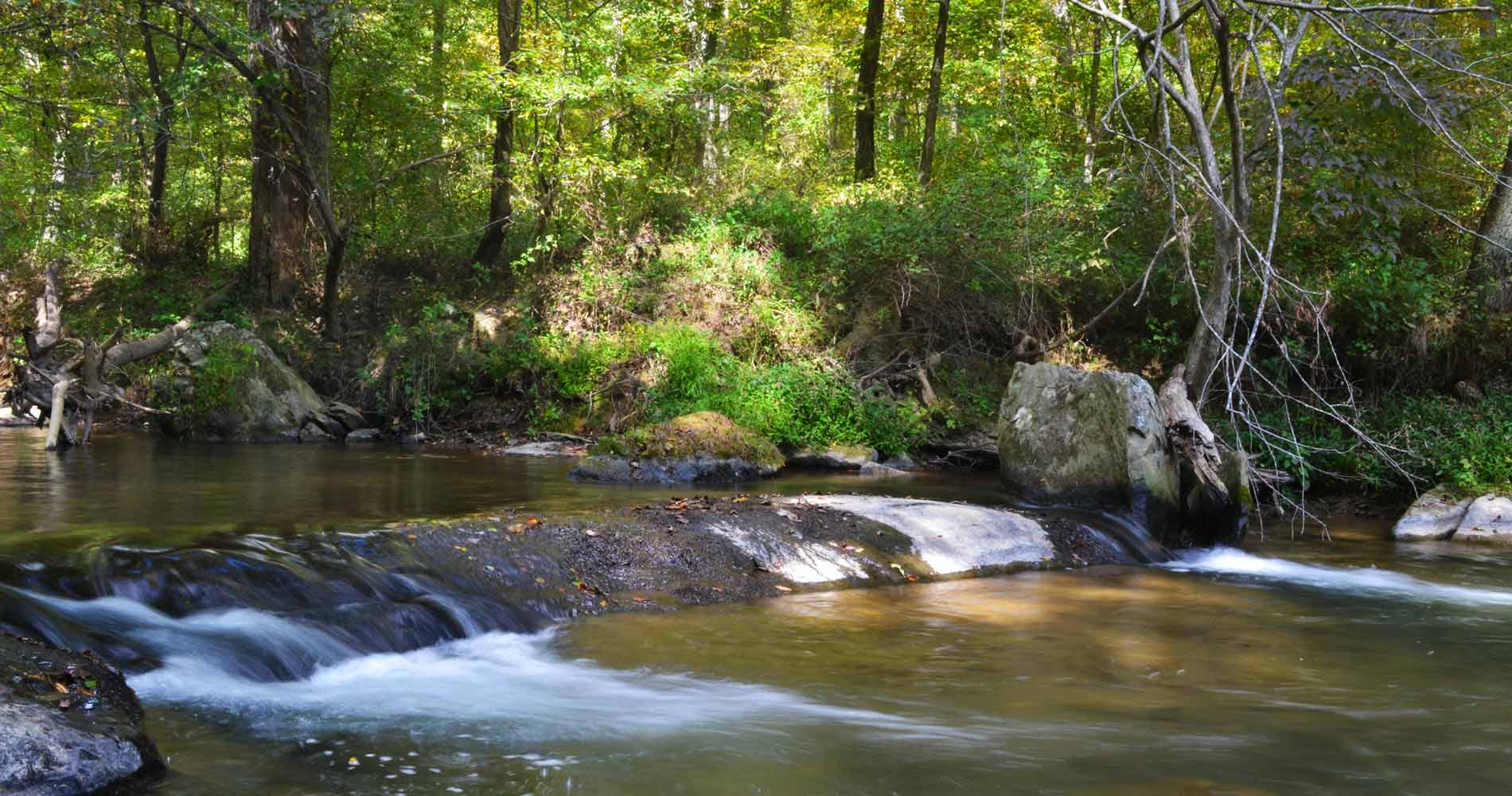 The Patuxent River State Park is the easiest hiking destination to reach in Maryland via MARC train service. (Image: Courtesy Find Your Chesapeake){ }