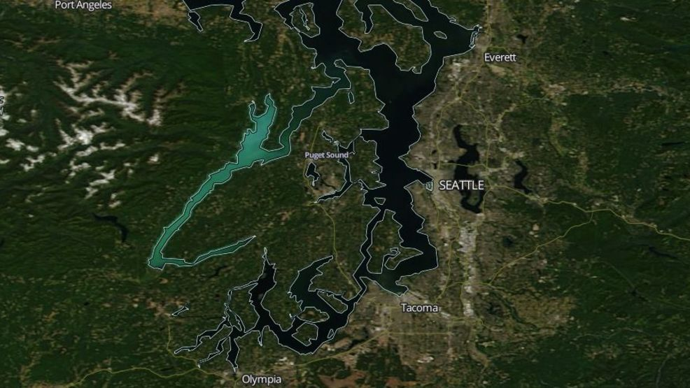 Plankton bloom turns Hood Canal waters a teal that can be spotted from space