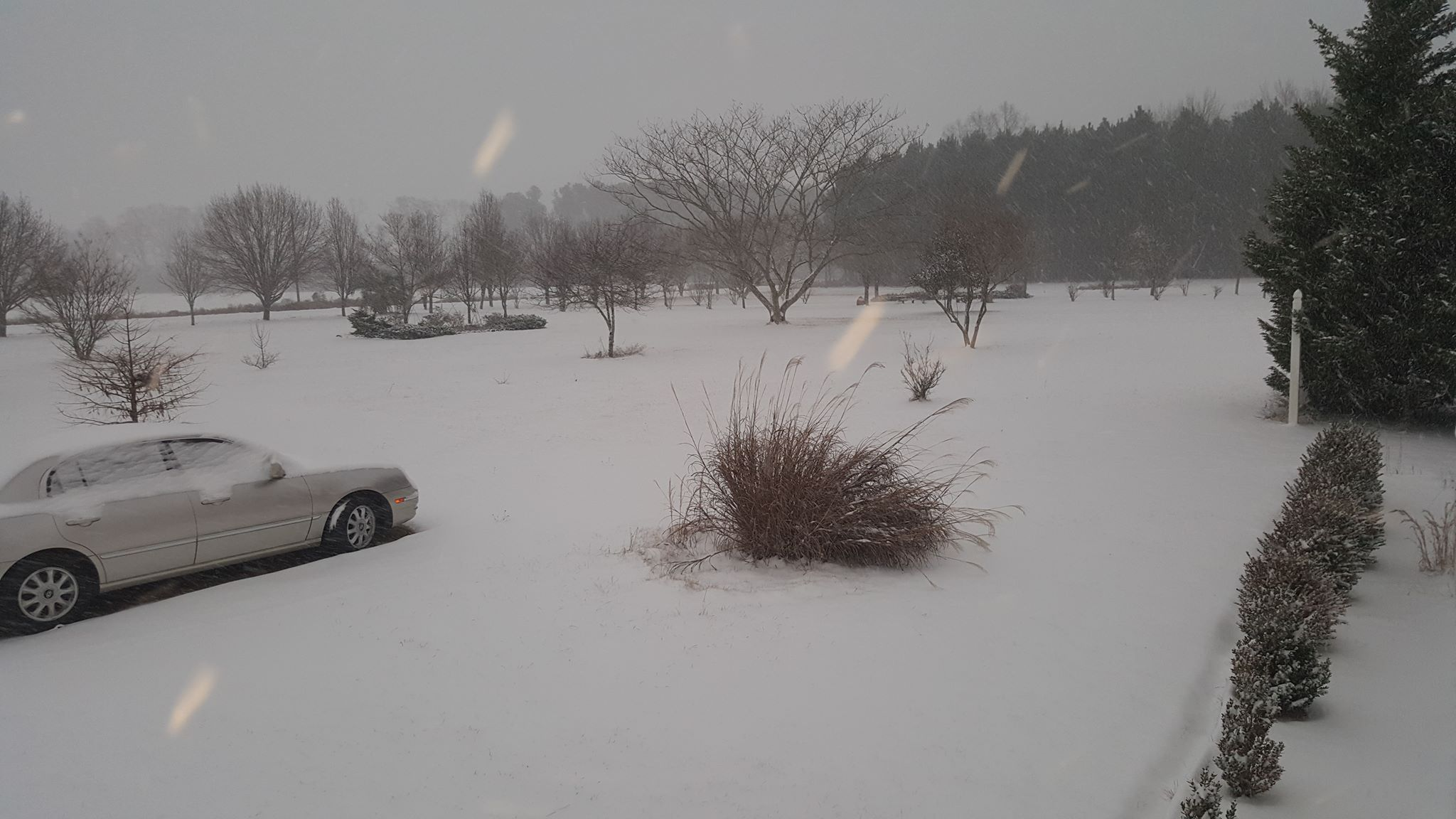A snowy scene in Lamar (Submitted by Jackie Daniels)<p></p>