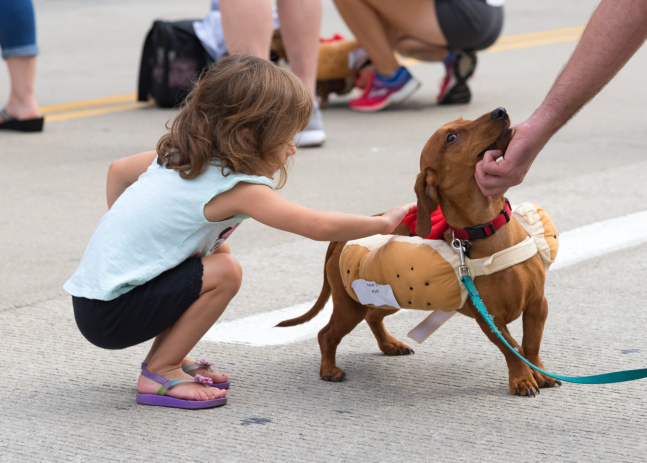 Oktoberfest embarked on another fun-filled year in the Queen City with the 11th annual Running of the Wieners at the Banks on Friday, September 21. / Image: Phil Armstrong, Cincinnati Refined // Published: 9.21.18