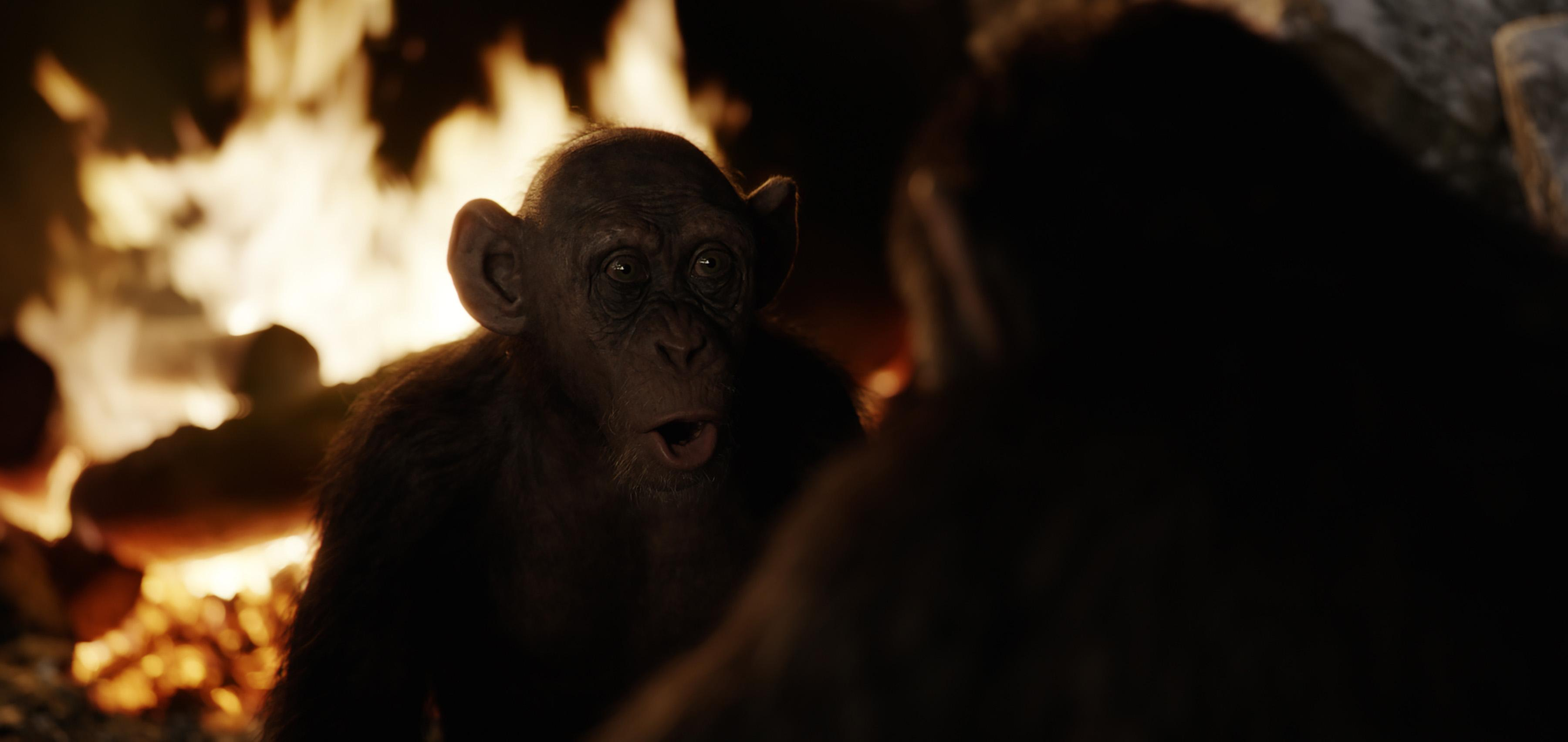 "Steve Zahn as Bad Ape in Twentieth Century Fox's ""War for the Planet of the Apes."""