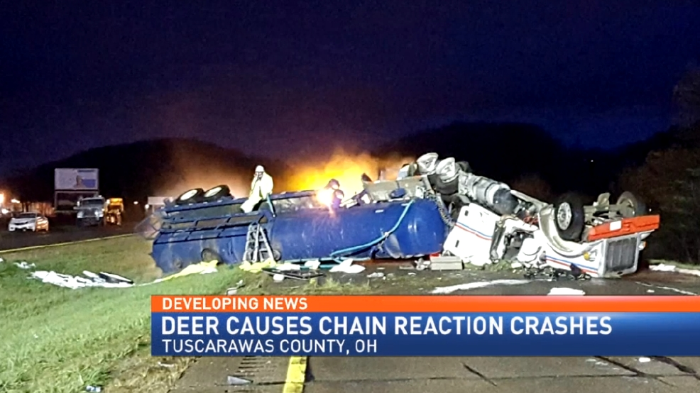 Deer causes chain reaction crashes in Tuscarawas County   WTOV