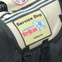 Puppies trained at SCI Dallas graduate, go on to become service dogs