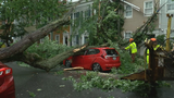 Storms topple trees, damage homes and cars across D.C. area