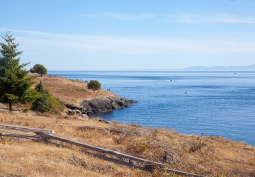 What Ferry Goes From Seattle To Whidbey Island
