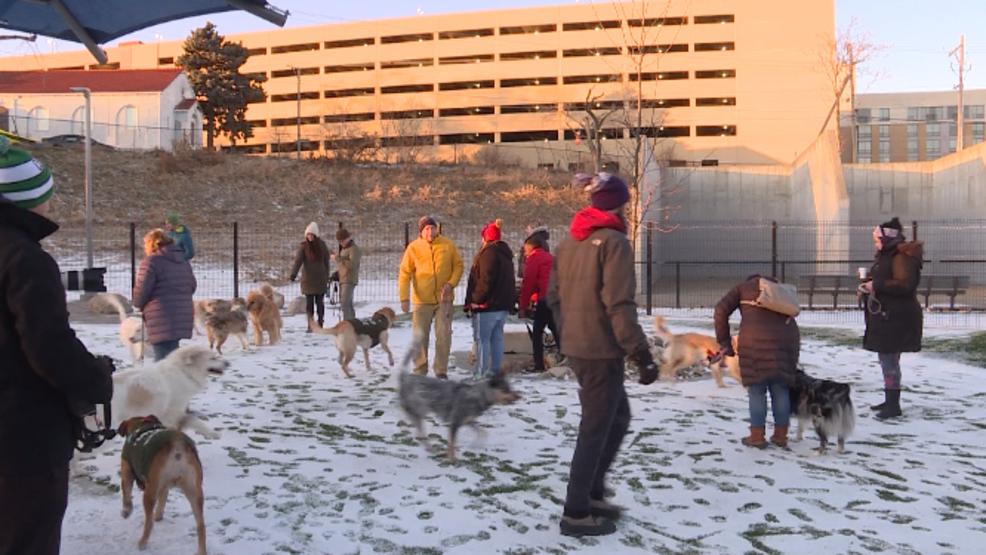 City unleashes new Dewey dog park in Midtown | KPTM