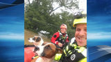 Georgetown FD rescues two dogs from flooded home in Fayette County