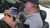 Disabled war veteran reunited with lost dog after two years