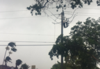 Boca fire_downed lines3.PNG