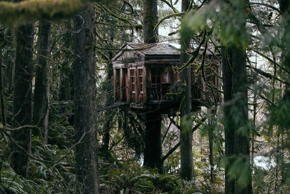 Photos Treehouse Point Bed Breakfast Seattle Refined