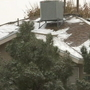 People in Northeast El Paso enjoying the snow, cold weather