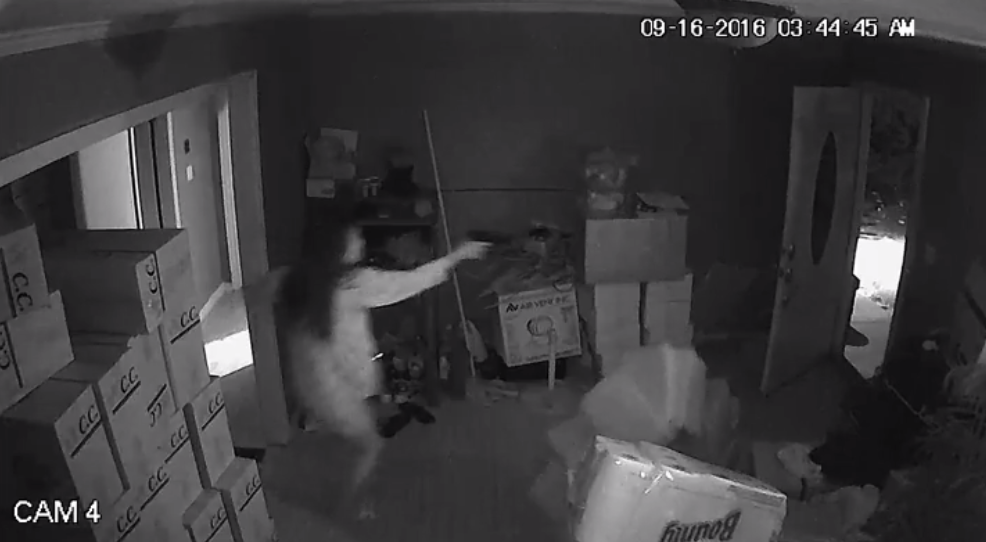 Warning: The video shows a violent exchange of gunfire between a woman and three suspected burglars. (Gwinnett Police)