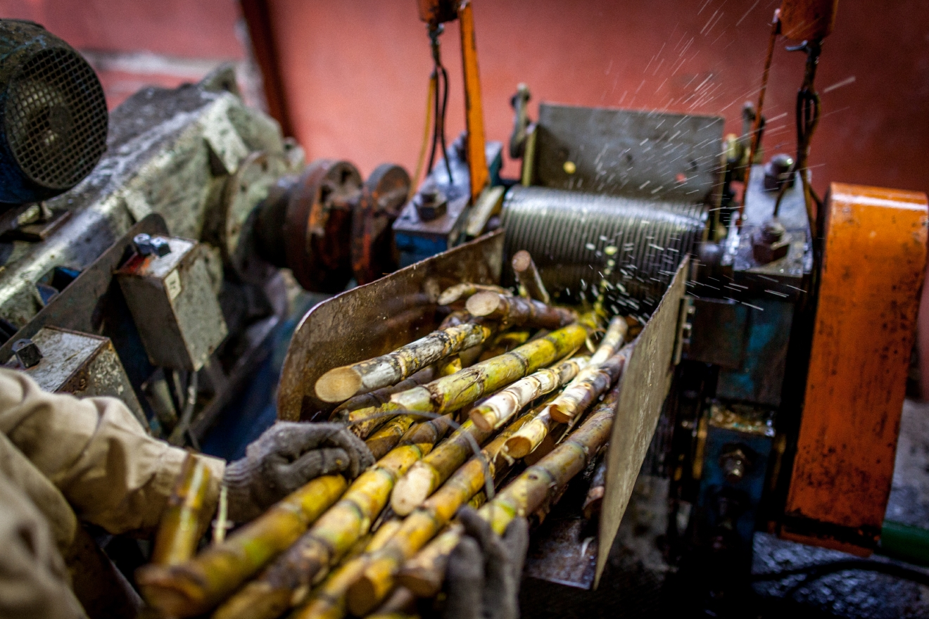 Pressing sugarcane juice for cachaca (Photo:Novo Fogo Cachaca)