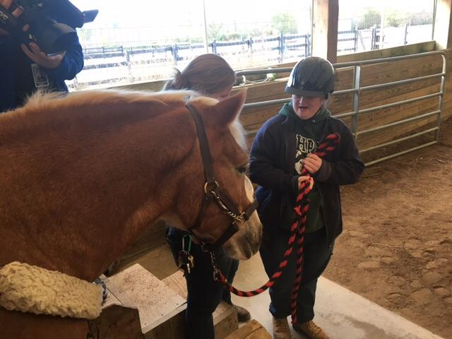 Campers at the Fowler Center for Outdoor Learning learn how to lead the horse with commands and movements. (Photo: Courtney Wheaton.){&amp;nbsp;}<p></p>