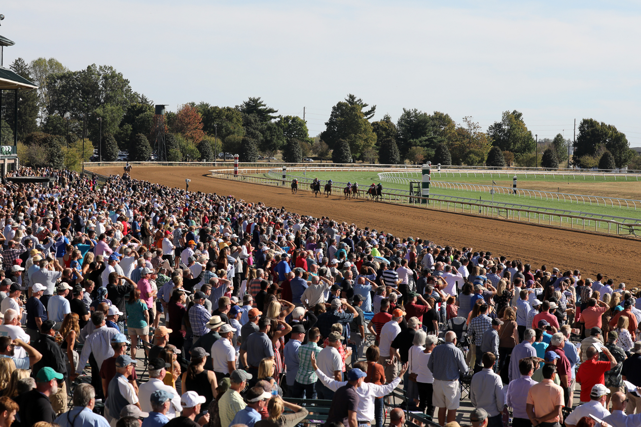 Through October 26th, Keeneland will be open to the public at 11 AM daily with the first post time at 1:05 PM.{ } Whether you're heading down on a party bus or just going with your family, Keeneland is a great way to celebrate Kentucky's horse racing history in a fun, affordable way. / Image: Keeneland photo