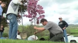 Dogwood Tree planted along Levee Bypass in Memory of Katherine Bonner-Bande