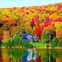 'Spectacular' autumn foliage is forecast for New England