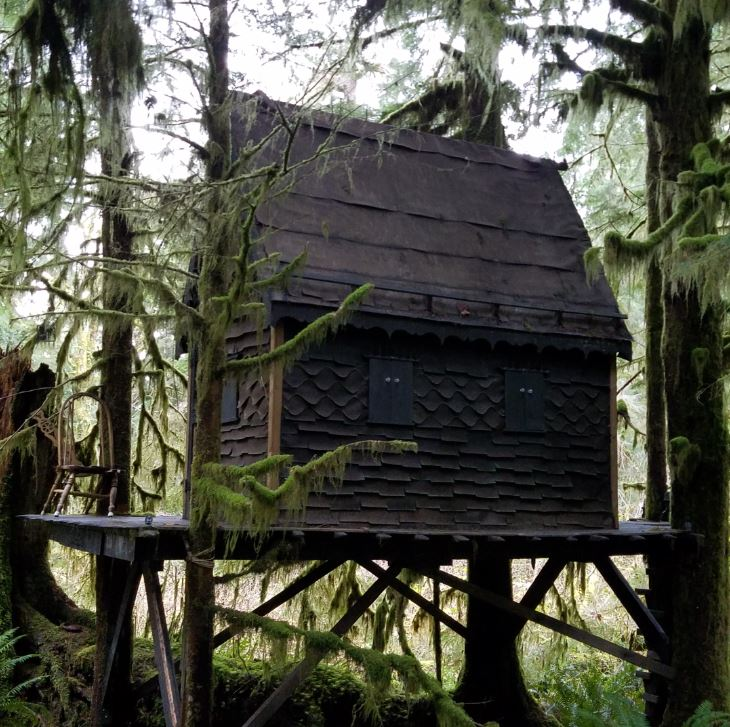 A man faces child pornography charges after this treehouse was found deep in the Snoqualmie National Forest. (Photo: FBI)