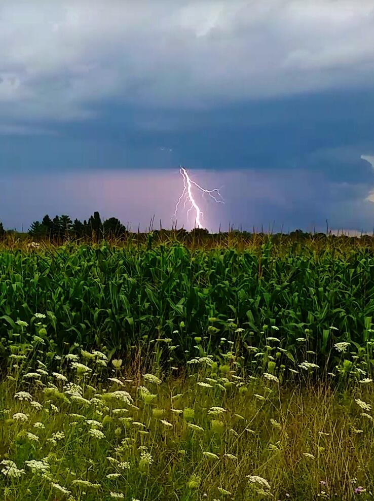 "Aug. 14: ""I took this picture in Stephenson (Menominee County) MI"" (Submitted by Brittany Shampo)"