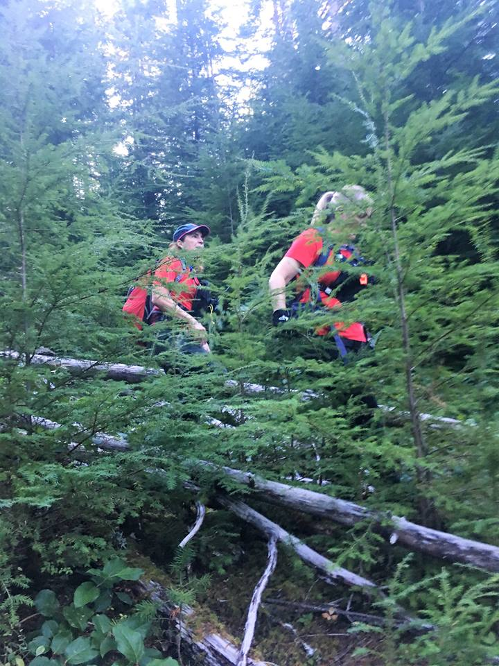 'One of our K9 teams working in Tillamook County' - Tweet from Mountain Wave Search and Rescue 3.jpg