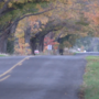 Concerns raised after attempted abduction in Comstock Twp.