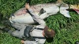 Massive sturgeon found dead in Oregon contained millions of eggs