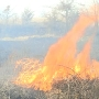 Despite rainfall, grass fires still a concern in NE Missouri