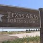 Texas A&M Forest services sheds light on fire resource strategies