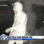 People caught on camera trying to break into cars in Berrien County